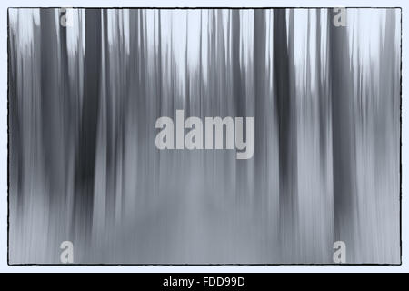 An abstract conceptual photo using slow shutter speed of trees in a forest showing leaves and trees - Stock Photo