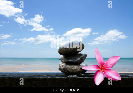 Pink frangipani or plumeria and beach with blue sky - Stock Photo