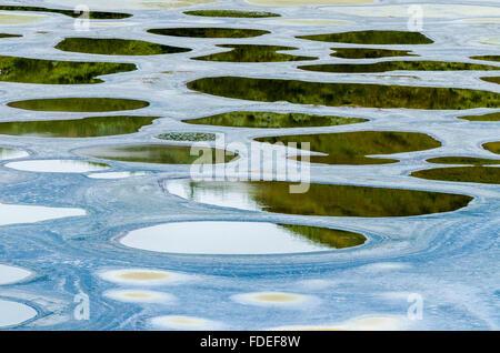 Spotted Lake, near Osoyoos British Columbia Canada - Stock Photo