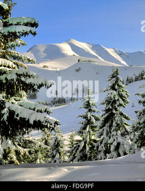 Mont Joly and Mont Joux in the French Alps above Saint Gervais and Megeve from the Mont Arbois. A winter ski resort - Stock Photo