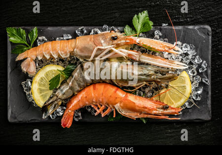 Prawns and lobster served on black stone - Stock Photo