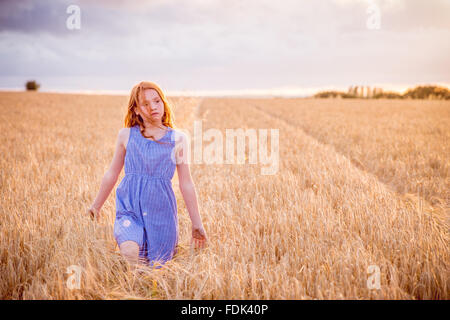 Girl walking through barley field, Bedfordshire, England, UK - Stock Photo