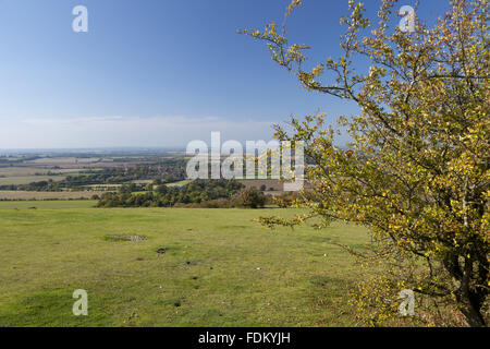 View west from Watlington Hill, Oxfordshire, in September. - Stock Photo