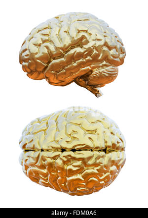 Human brain golden - Stock Photo