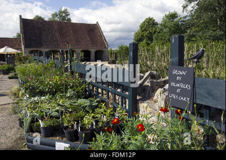 The plant sales area at Lytes Cary Manor, Somerset. - Stock Photo