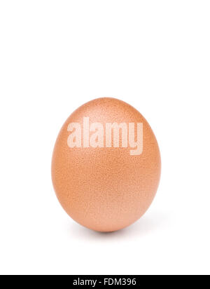 brown egg isolated on white - Stock Photo
