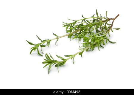Fresh twig of Winter savory on white background - Stock Photo