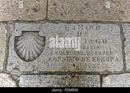 Shell Vieira symbol of Santiago de Compostela Path