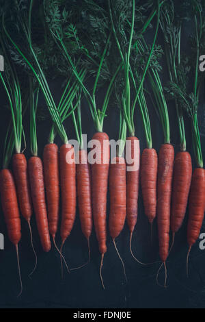 Some beautiful freshly picked organic carrots