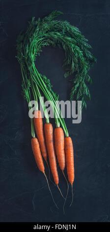 Some beautiful freshly picked organic carrots - Stock Photo