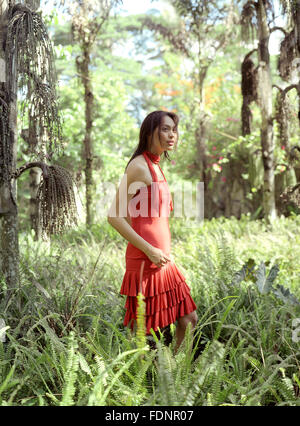 A Filipina woman stands in a field of ferns. Lipa City, Philippines - Stock Photo