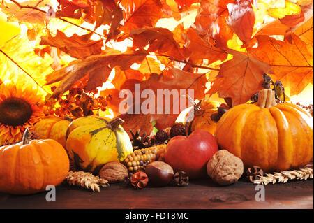 harvest festival,harvest time,autumn decoration - Stock Photo