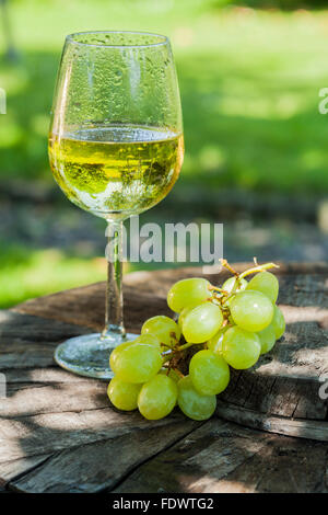 chilled wine in garden - Stock Photo
