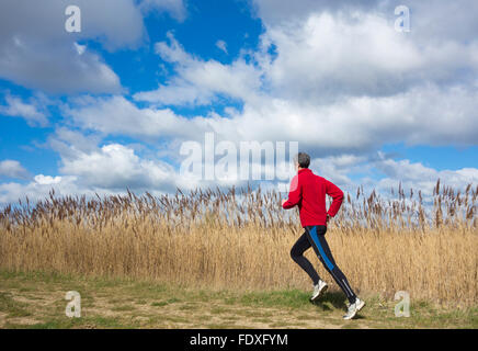Mature male runner on trail in country park. UK