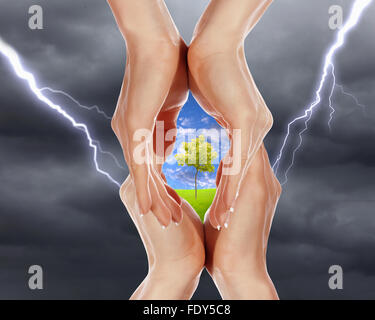 human hands protecting tree from thunderstorm and lighting - Stock Photo