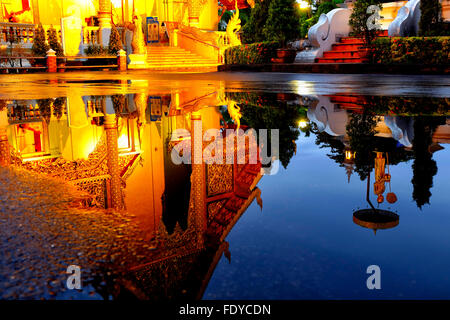Reflection of the Wihan Luang of Wat Phra Singh in the water of a puddle, Chiang Mai, Thailand