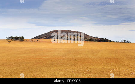 distant layout of granite mountain of Wudinna national park surrounded by cultivated agricultural fields of wheat - Stock Photo