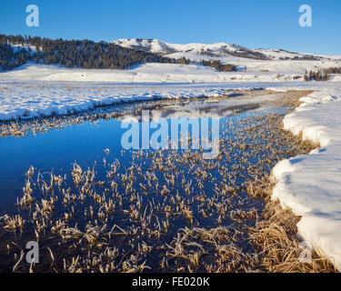 Yellowstone National Park, WY:  An icy Lamar River reflecting Speciman Ridge on a winter morning - Stock Photo