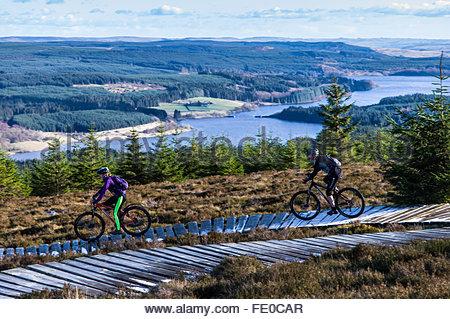 Kielder, Bellingham, Northumberland, UK. 3rd February 2016. Mountain bikers pedal along the 'Stairway to Heaven' - Stock Photo