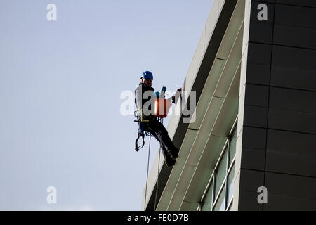 Window cleaners suspended high up in seat harnesses on Abseiling Ropes washing luxury apartment windows in Dundee, - Stock Photo