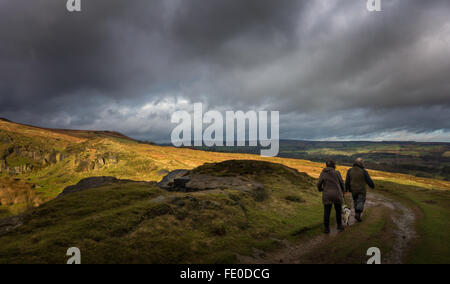 Two people walking a dog in the light and shade on rural Burley Moor, Wharfedale scene, West Yorkshire, England - Stock Photo