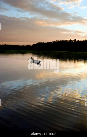 Boat on Amazon River in Ecuador at sunset - Stock Photo