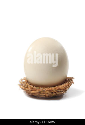 Studio shot of a large egg in a bird nest on a white background. - Stock Photo