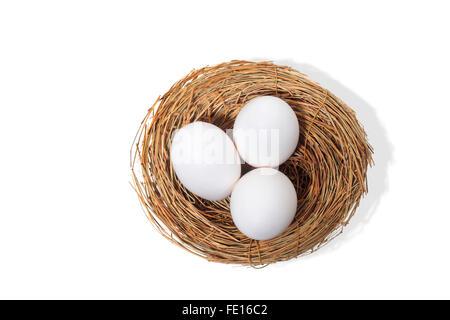 Studio shot of three white Eggs in Bird's Nest on a white background - Stock Photo