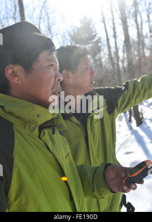 Hunchun, China's Jilin Province. 3rd Feb, 2016. Rangers check the route by navigator in the forest of the Hunchun - Stock Photo