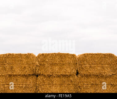 Six stacked yellow square hay bales on gray overcast sky. - Stock Photo
