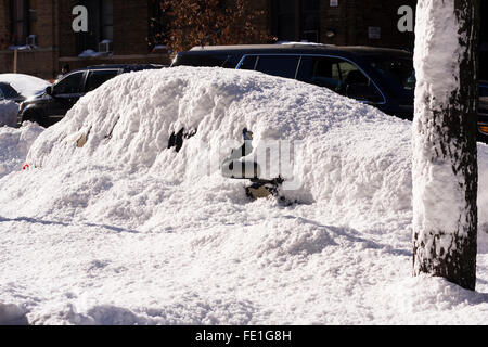 A tree with snow adhering to its side with a parked car almost completely covered with snow only a side mirror is - Stock Photo