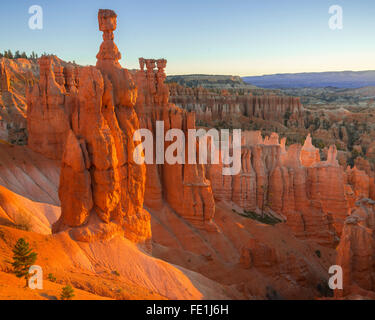 Bryce Canyon National Park, UT: Morning sun in the Bryce Ampitheater backlighting Thor's Hammer hoodoo and sandstone pinnacles