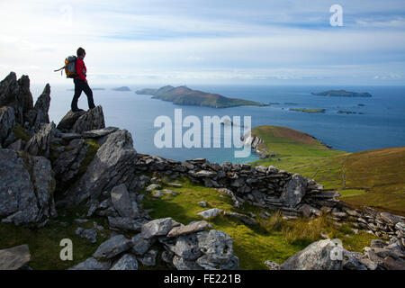 Walker looking across Slea Head and the Blasket Islands from Eagle Mountain, County Kerry, Ireland. - Stock Photo