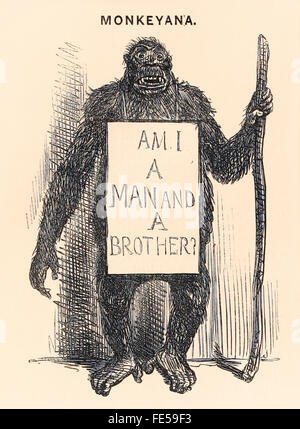 'Am I a man and a brother?' a begging ape's placard reads in this cartoon 'Monkeyana' published in this 'Punch, - Stock Photo