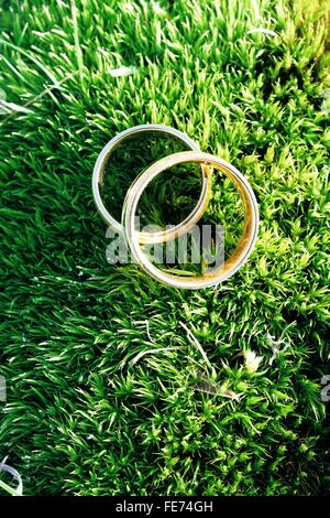 High Angle View Of Wedding Rings On Grass