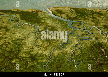 Ostheller, salt marsh with tidal channels, Wadden Sea, aerial view, Norderney, North Sea, North Sea island, East - Stock Photo