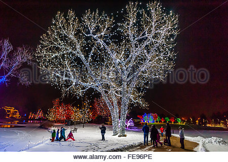 Children Playing With Christmas Lights Stock Photo Royalty Free Image 48781083 Alamy