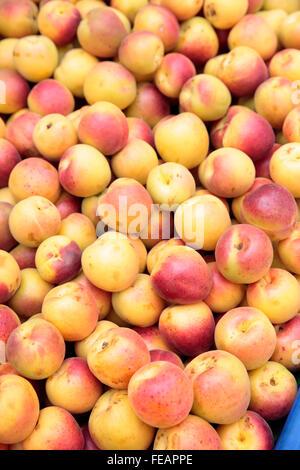 Market stall selling fresh Apricots, Istanbul, Turkey - Stock Photo
