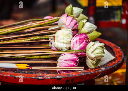 Lotus flowers used as offering in Buddhist temple - Stock Photo