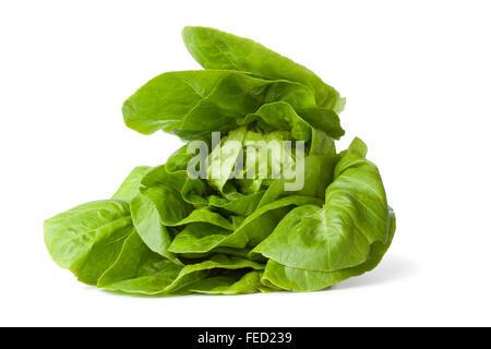 Fresh green little gem lettuce on white background - Stock Photo