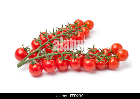 Small fresh cherry tomatoes on a vine on white background - Stock Photo