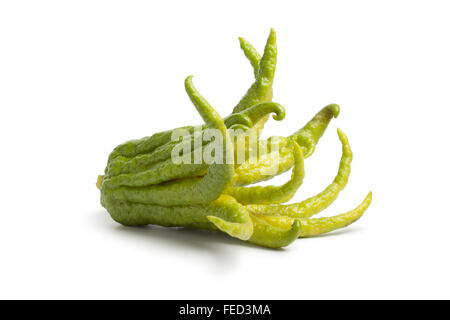 Whole single fresh fingered citron fruit on white background - Stock Photo
