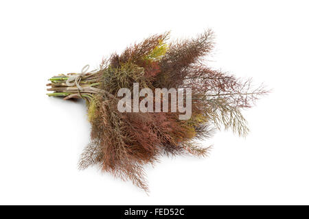 Bunch of fresh bronze fennel on white background - Stock Photo