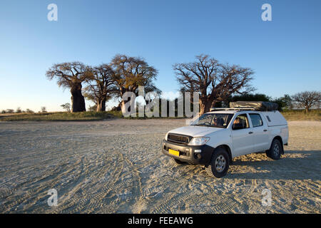 Baines Baobabs in Botswana - Stock Photo