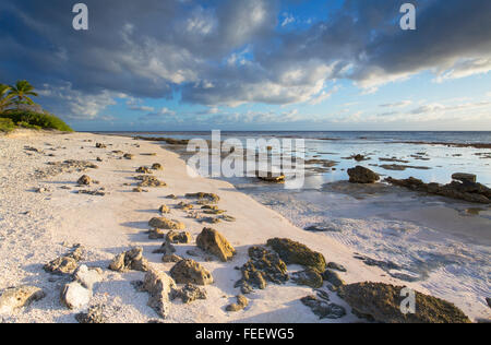 Beach at sunrise, Fakarava, Tuamotu Islands, French Polynesia - Stock Photo