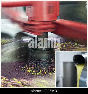 Traditional olive oil pressing mill in production - Stock Photo