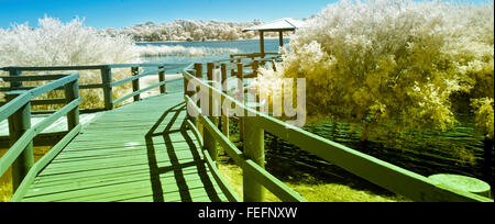 Walkway and Lookout at Lake Gwelup Perth, Western Australia - Stock Photo