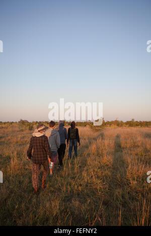 walking safari in the Okavango Delta. - Stock Photo