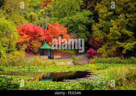 Gazebo in the colourful autumn park by the pond during the rain - Stock Photo