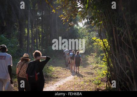 Tourists walk along a path on Uno islands, Bijagos archipelago, Guinea Bissau - Stock Photo